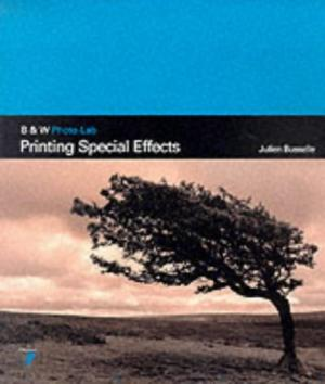 Printing Special Effects by Julien Busselle - 2880464285