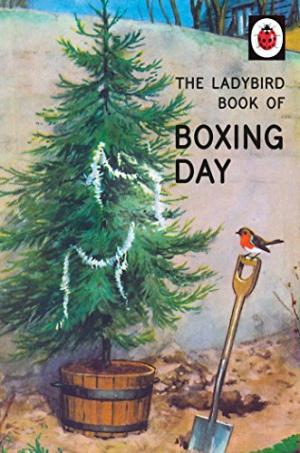 The Ladybird Book of Boxing Day - 9780718184865